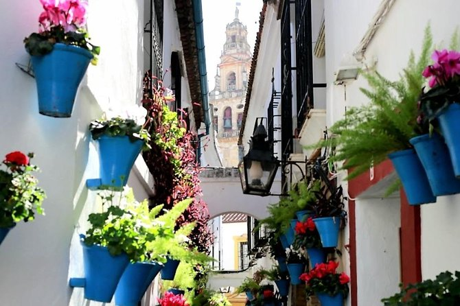 Private Tour: Cordoba Day Trip from Granada