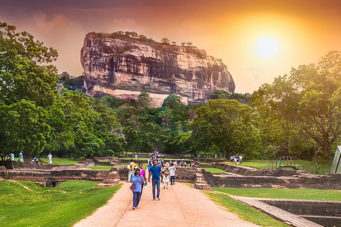 Full-Day Tour to Sigiriya and Dambulla from Colombo