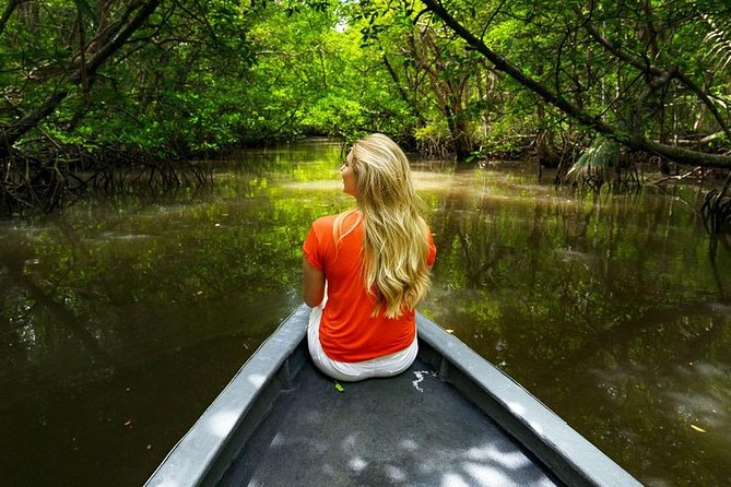 Tung Yee Peng Mangrove Forest Tour By Longtail Boat From Koh Lanta