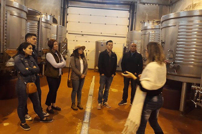 Silves & Wine Tour (Castle, Museum, Wineries, Gastronomy) Full day!