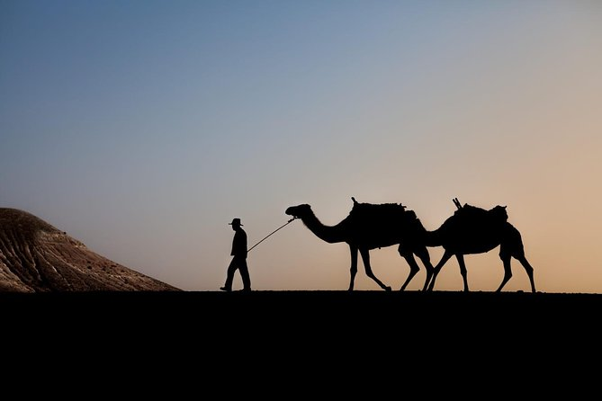 Sun set camel ride in Agafay desert