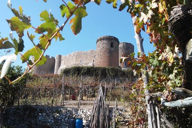 Castello di Lettere (Castle of Lettere) & Italian Cooking Class Tour with Lunch! photo 11
