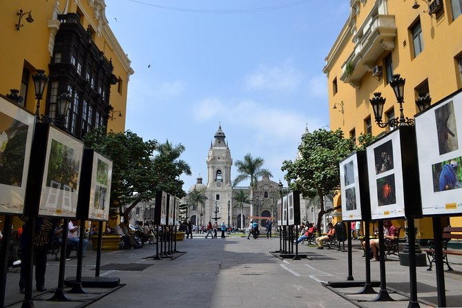 From Lima: In search of the Oasis 2 days