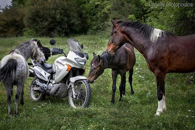 Riders tours (Vikos-Aoos Geopark)