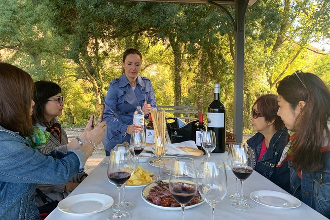 A Sip-To-Sip Tour of Boutique Rioja Wineries & Picnic Lunch (Small Groups Only)