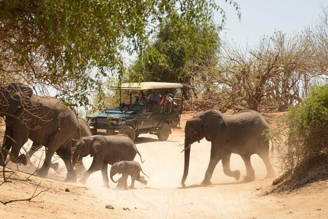 2 Days Hwange National Park from Victoria Falls photo 1