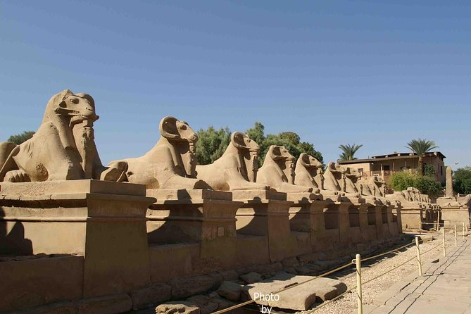 Full day tour at Luxor (East bank&West bank)