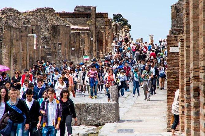 Pompeii, Herculaneum and Vesuvius private tour