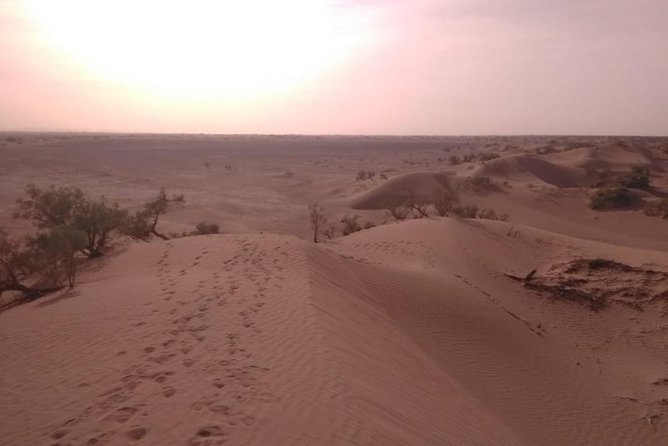 Sahara desert trip 3 days & 2 Nights photo 3