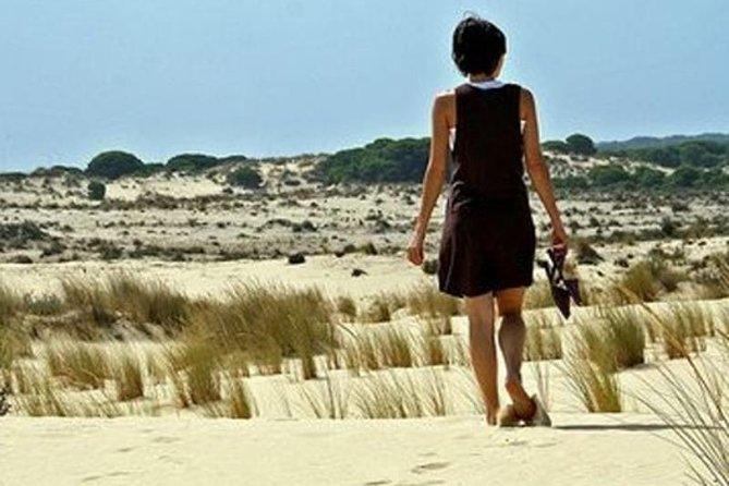 Doñana Natural Park from Sevilla