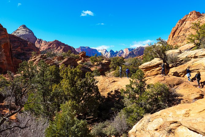 Small Group Guided Walking Tour of Zion National Park