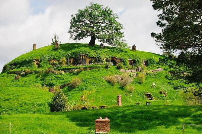 Hobbiton movie set and Waitomo glowworm caves. Small group of 4-5 people.