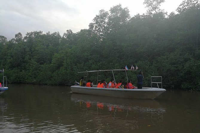Binsulok river cruise with proboscis and firefly watching