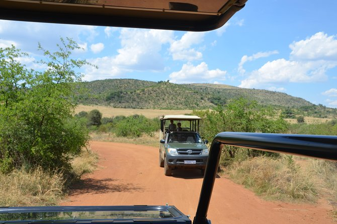 Pilanesberg National Park Safari - 8 hours