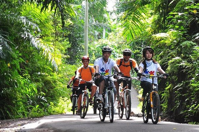Bali Cycling and ATV Ride Experience