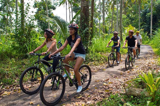 Bali Cycling and Bali Horse Riding Experience