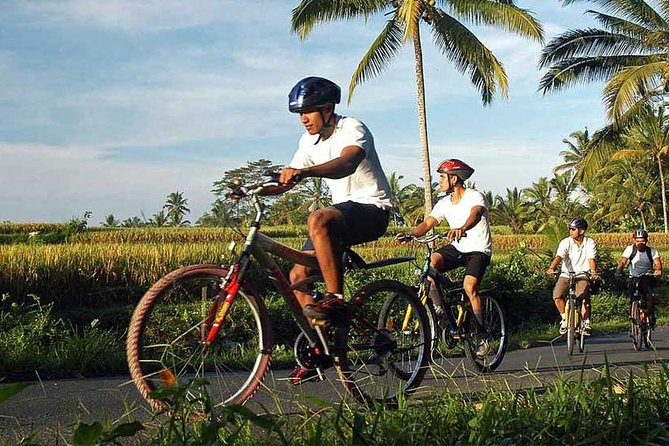 Bali Cycling and Spa Experience