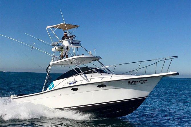 4hrs Fast Fishing Boat Fishing