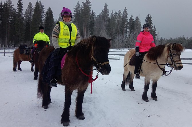Ride at one with Finnish Nature