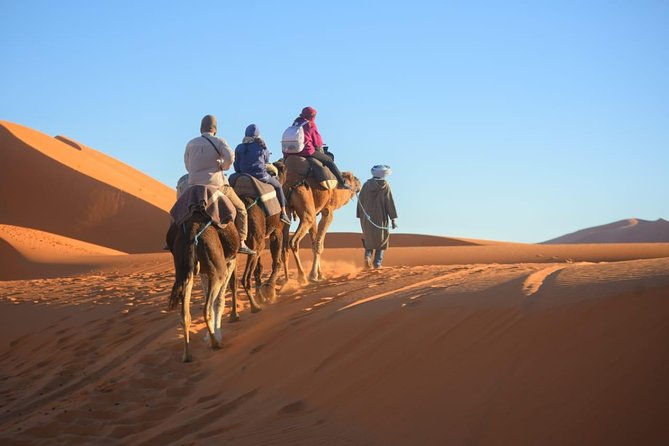 3-Day Desert Tour to Marrakech via Merouga-Erg Chebbi from Fez