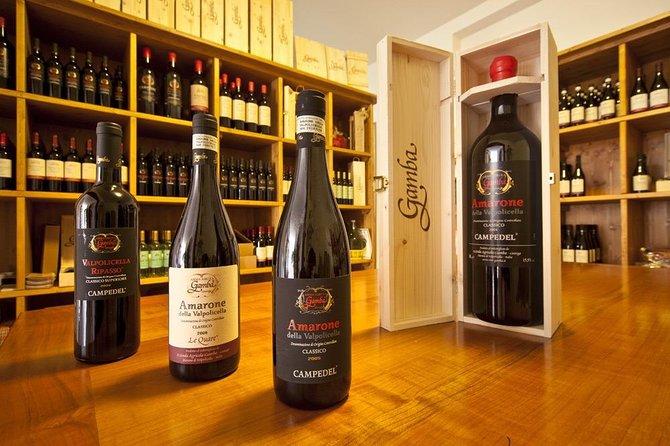 Wine Tasting in Verona