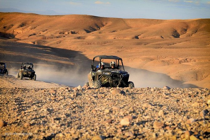 Buggy Ride in the Desert photo 1