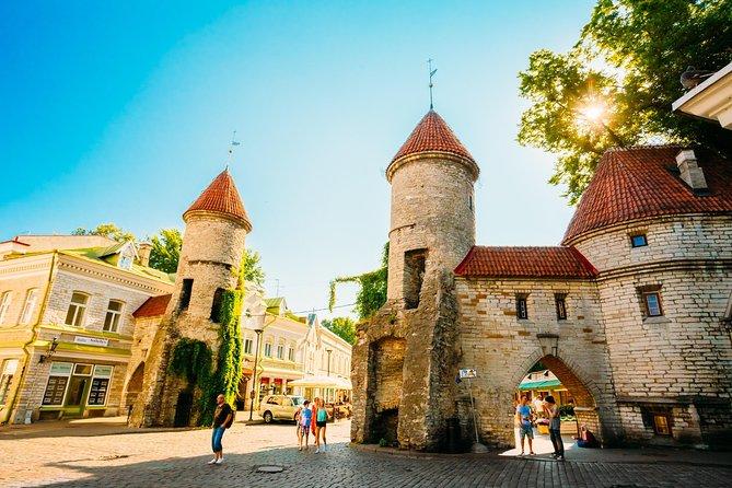 5h Tallinn Old Town, Kadriorg Pirita Small Group Tour