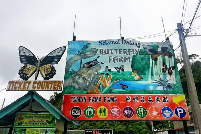 ONE DAY PRIVATE TOUR – Cameron Highland & Hulu Tamu Hot Spring, Lunch included photo 8