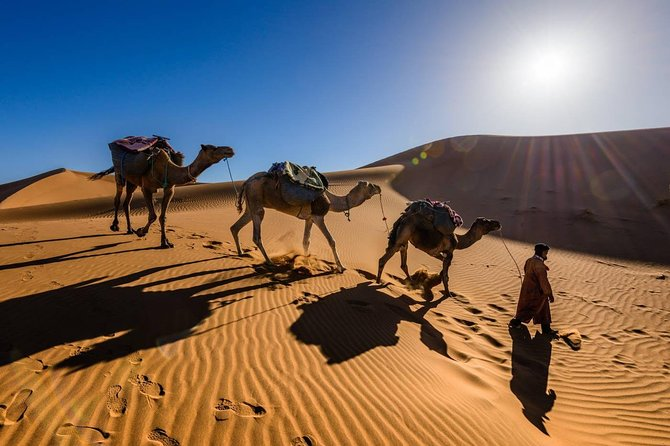 4 Days Desert Tour From Marrakech Including Skoura Oasis and Agdez