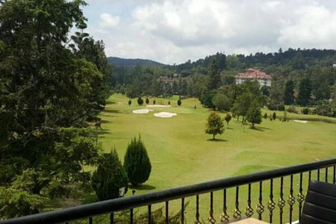 ONE DAY PRIVATE TOUR – Cameron Highland & Hulu Tamu Hot Spring, Lunch included photo 10