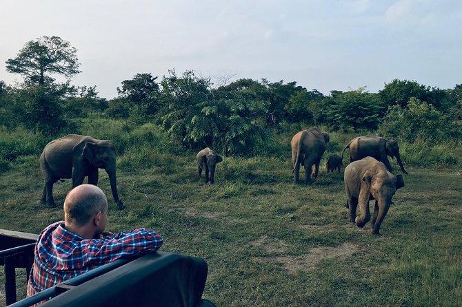 Hurulu Eco Park Budget Friendly Safari