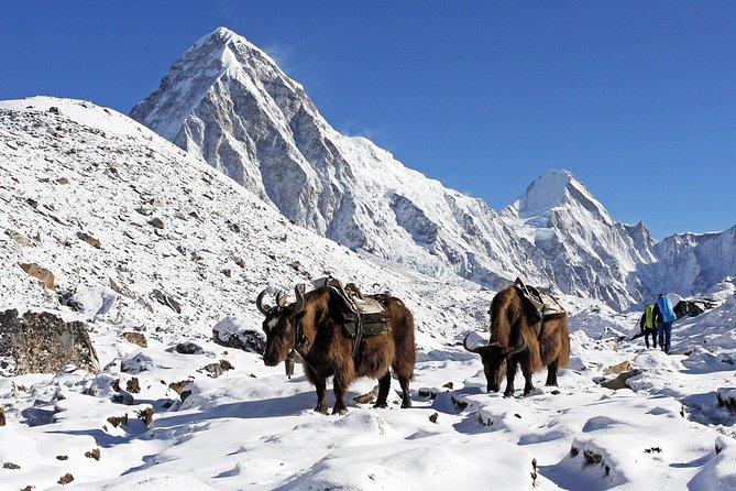 Everest View Trek- 8Days