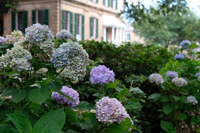 Botanical Walking Tour of Savannah