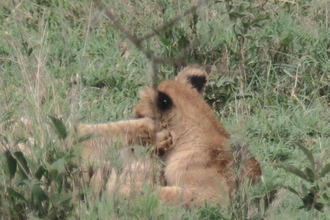 7-Day Kenya Off the Beaten Path - Mid-Range