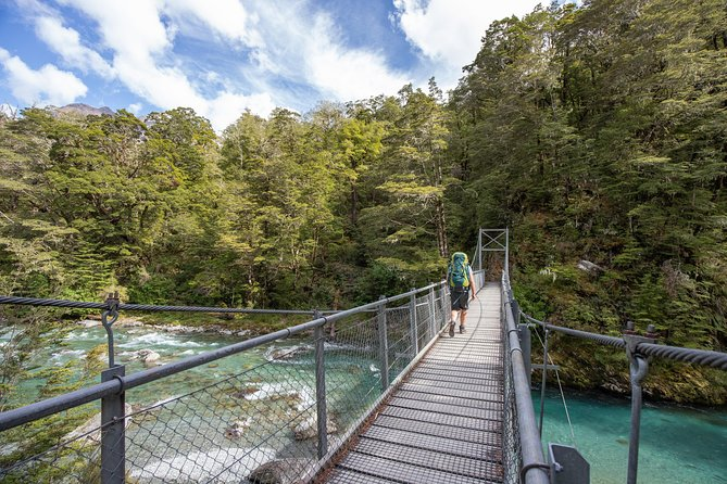 Routeburn Track Guided Walk (Half-Day)