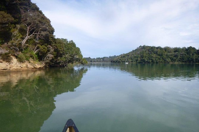 Okura River Kayak Hire