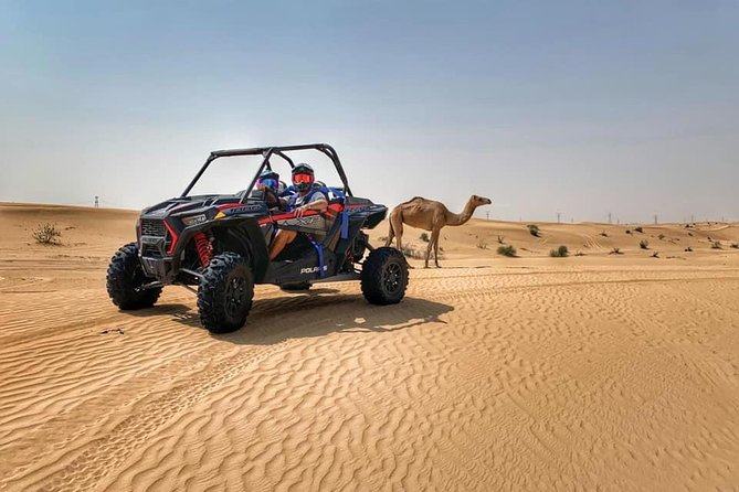 Buggy Desert Adventure Tour with Free Pick n Drop photo 2
