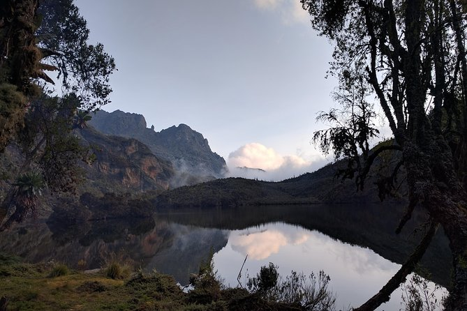 5 Days Rwenzori Hiking Uganda