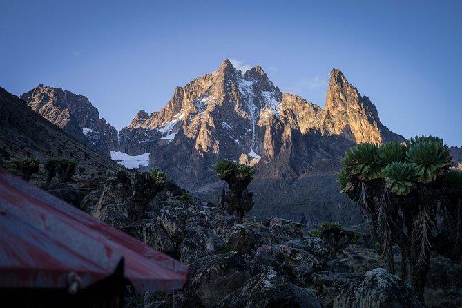 Mt. Kenya Hike