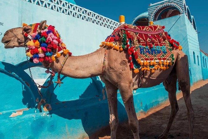 Nubian village and Camel ride photo 4
