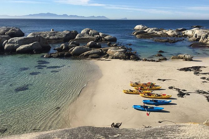 Full-Day Cape Town Kayaking Water Adventure