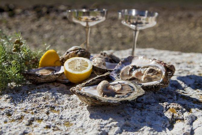 Peljesac Peninsula Wine Tasting Tour from Dubrovnik