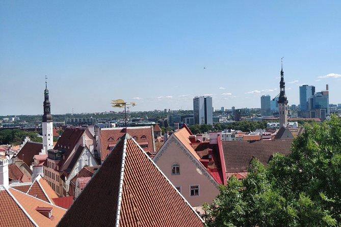 Go South - Private Day-Trip to Tallinn, Estonia