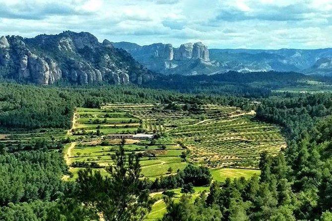 Greenway Section Cretas - Horta de Sant Joan 11km (90% descending 10% flat)