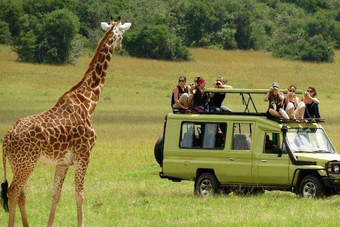 4 Days Serengeti migration-safari and ngorongoro