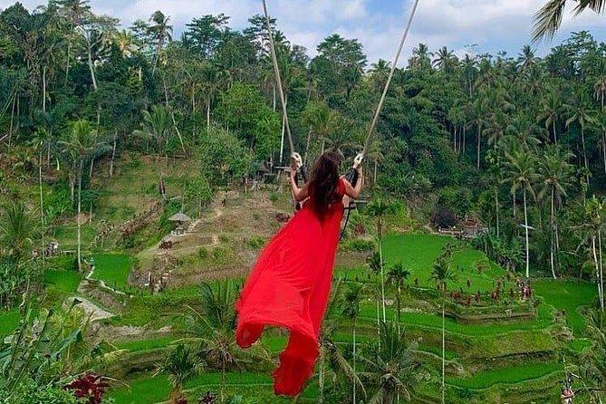 Private Full-Day Tour in Bali