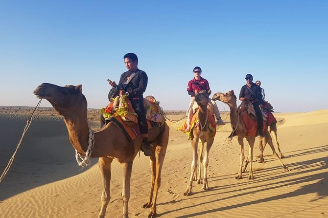 Diamond Camel Safari
