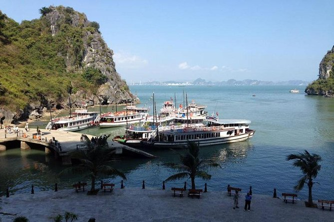 Best Halal Tour in Halong Bay With Transfer From Hanoi & Kayak & Halal Lunch photo 13