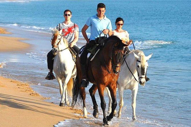 Horseback Riding in Zahora Beach, Spain
