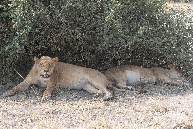 15 Day Mobile Camping Safari Botswana